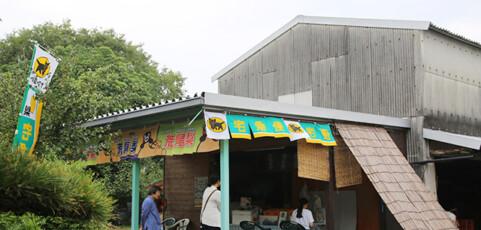 """オリジナル品種""""秋高""""をもつ""""村上果樹園""""さん"""